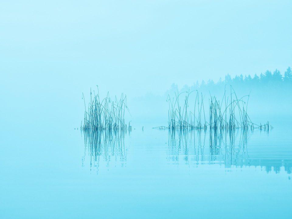 Il massacro del Lago Bodom